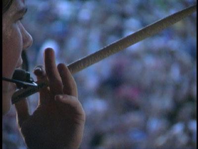 drumstick.jpg